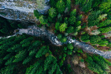 Creek winding through cliffs and forests seen from a drone