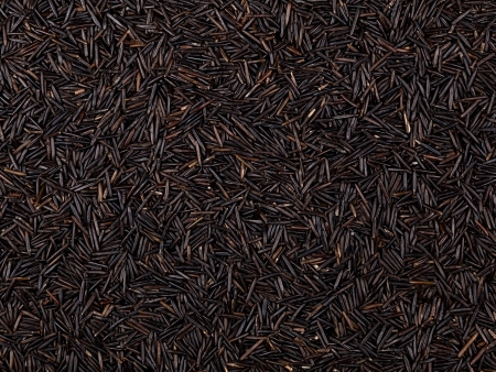 wild rice: Seeds of wild rice  Background for your design