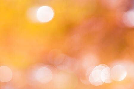 Natural bokeh. Beautiful abstract background for your design