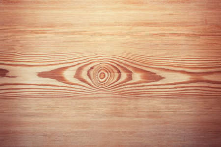 Larch tree board texture