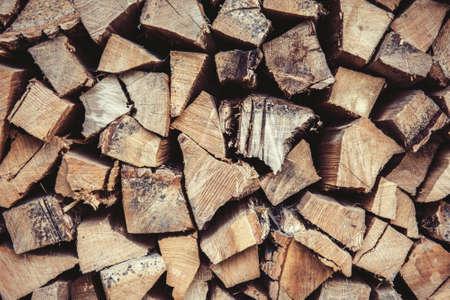 tree trunk: firewood - oak tree and ash tree