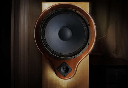 sound system: Natural wood sound system - oak tree body and yew tree front