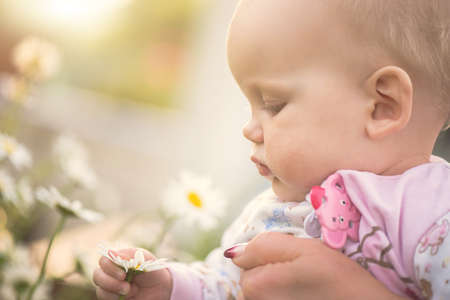 small baby girl holding a daisy in her hand on summer day