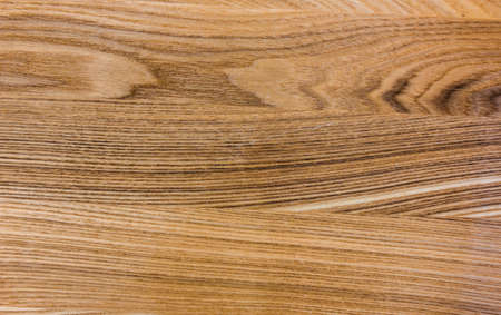 The texture of the wood. Flooring. Oak, Ash and Elm trees