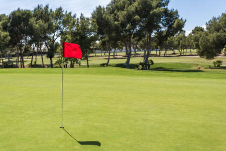 golf ball: Red flag in the hole on a green golf field golf course