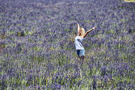 lifted hands: Young woman raised her hands up in lavender. Lifted hands up. Blonde girl having fun in a wide field of lavender. Stock Photo