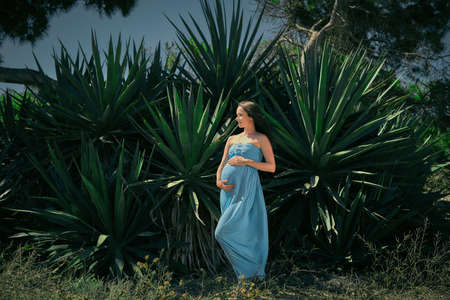 expectant mother: Expectant mother in a blue dress on a background of cacti. Pregnant posing against a background of green thorns. Stock Photo