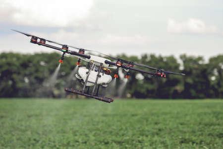 Landbouw drone vliegen naar gespoten meststof op de rijstvelden. Industriële landbouw en slimme landbouw Stockfoto