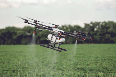 Agricultura zumbido volar a fertilizante rociado en los campos de arroz. Agricultura industrial y agricultura inteligente Foto de archivo