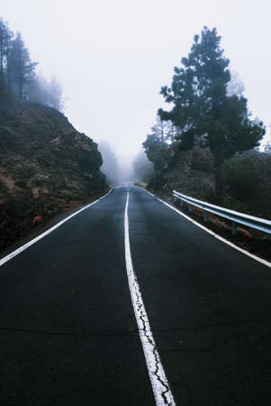 Beautiful road in the fog through rocks and treas