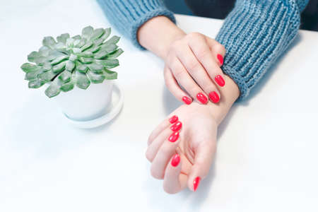 Perfect groomed womans hands with red nail varnish.
