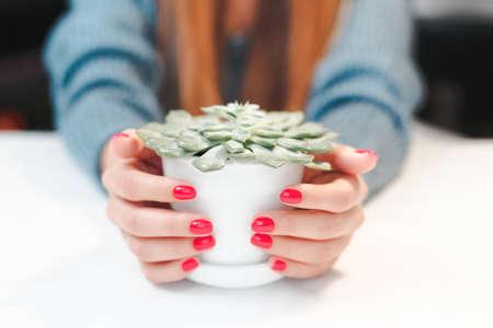 Beauty treatment photo of nice manicured woman fingernails