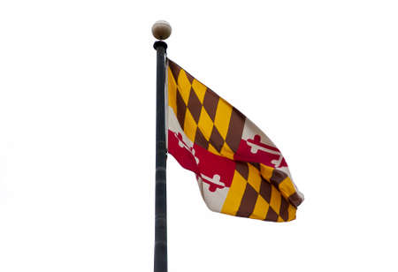 maryland flag: The Maryland Flag Stock Photo