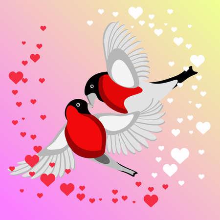 Bullfinch Birds kissing Illustration