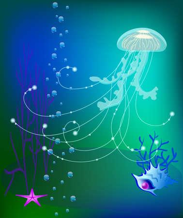 seaweeds: jelly fish underwater world, sea shell Illustration