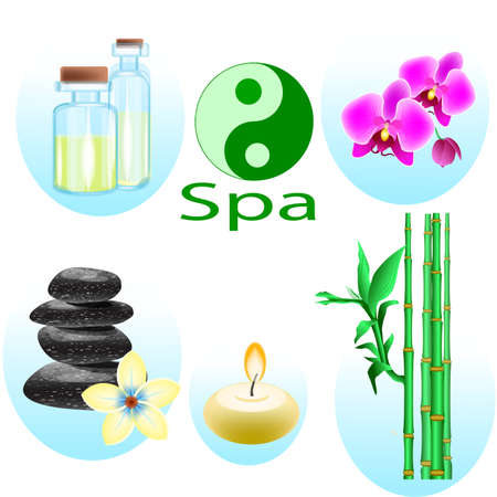 A Vector illustration of a set of spa icons isolated Illustration