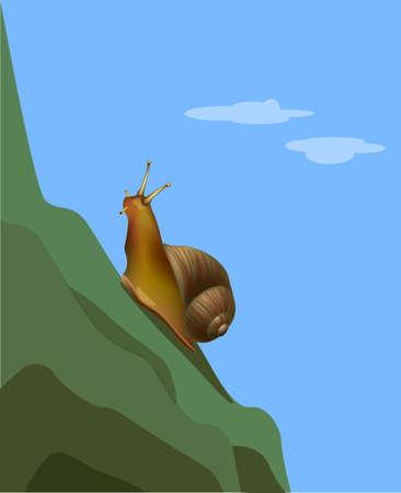 Reaching a goal snail on the mountain. Vector illustration Illustration