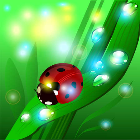 glimpse: Vector summer illustration with the glare of the sun, ladybug, grass and shine Illustration
