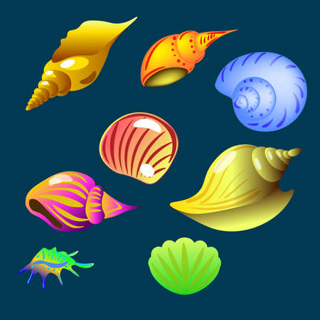 vector set of sea shell on the dark background isolated