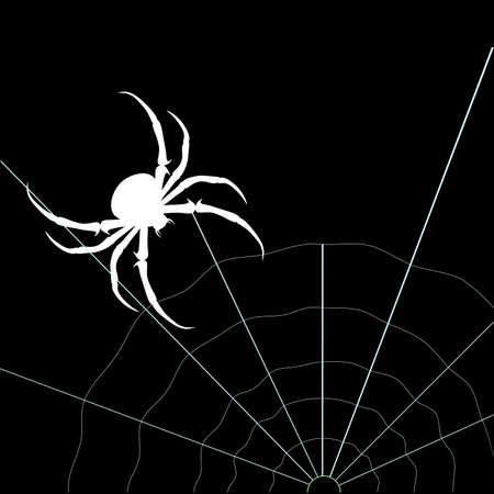 White spider on the black background. Vector silhouette Illustration