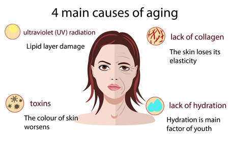Causes of aging, vector illustration isolated on the white background