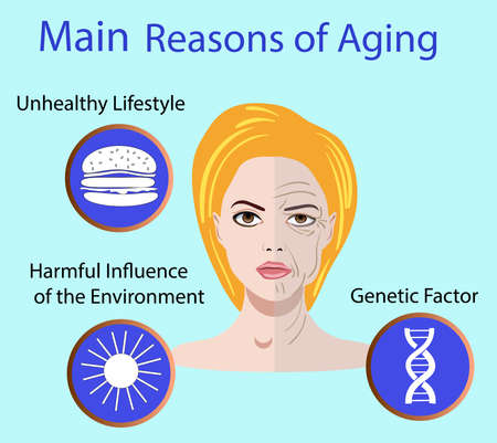 Vector illustration with reasons of aging Illustration