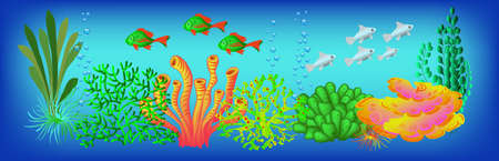 Underwater background, vector illustration for design and banners.
