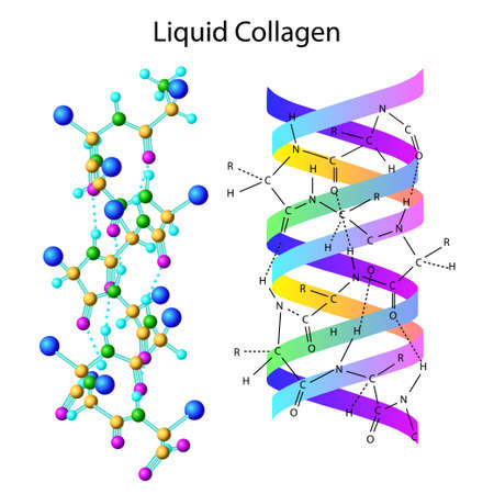 Isolated illustration of liquid collagen Vettoriali