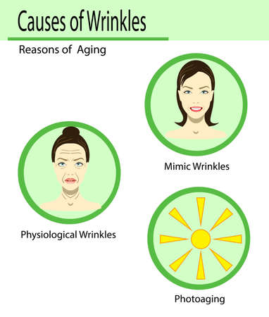 Causes of aging, vector illustration reasons of aging, types of wrinkles on the light background