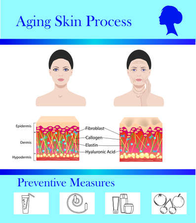 Aging skin process and preventive tips, vector illustration.