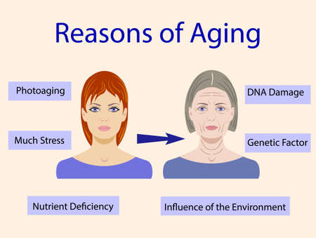Causes of aging, vector illustration with two faces isolated Vectores