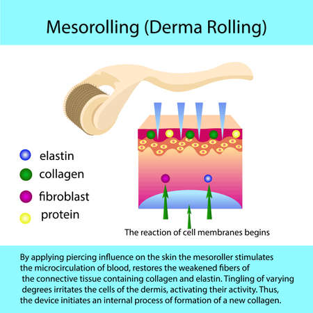 Mesorolling process with a describtion and cell structure