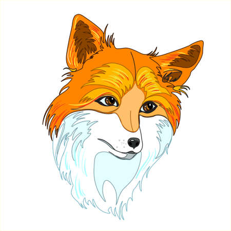 A hand drawn vector of a red foxs head Imagens