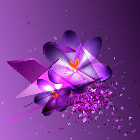 Abstract violet texture background with crocus flower, vector illustration