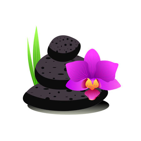 Spa stones and fresh pink orchid flowers isolated on the white Vectores