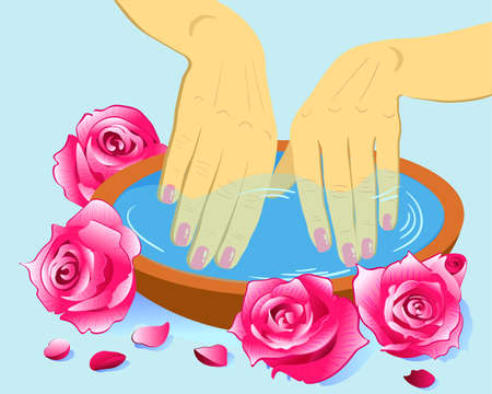 Manicure, hand care. Woman s manicured hands roses, vector illustration