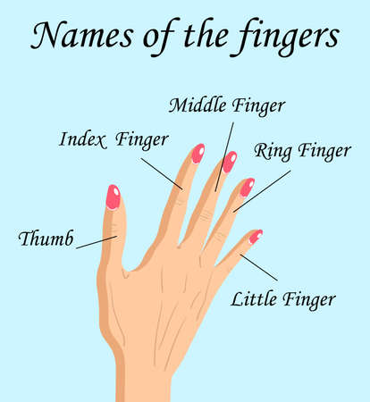 Fingers Names of Human Body Parts, a hand drawn vector cartoon illustration of human fingers and its names. Ilustração
