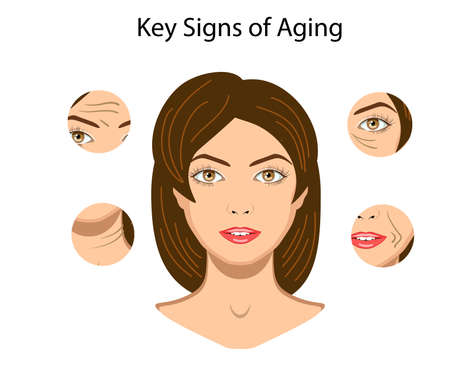 Key signs of aging, vector illustration isolated on the white background