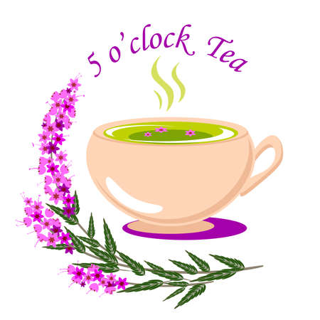 Five o clock tea vector illustration with a cup of tea and some heather plants