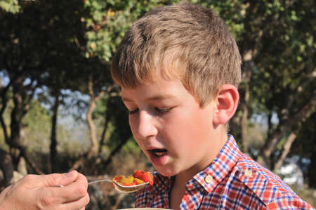 tried: Mom handed spoon salad son, that he tried it Stock Photo