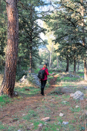 arts culture and entertainment: Girl for a walk along the trail in the forest with a backpack