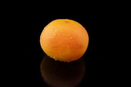 specular: a grapefruit with drops of water on black background Stock Photo