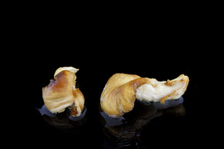 knows: two food mushrooms on a black background with water