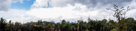 サン天使の生態保護区 写真素材
