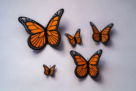magnets: Monarch Butterfly Magnets Stock Photo