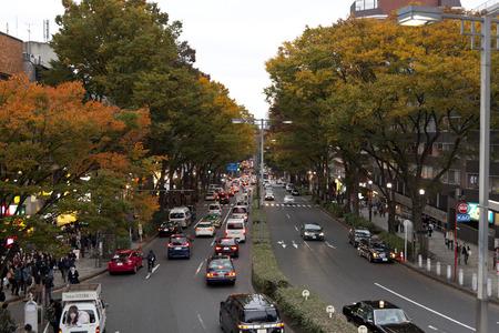 harajuku: STREET OF HARAJUKU, TOKYO