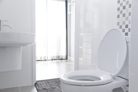 White toilet bowl in the bathroom. Imagens - 50905902