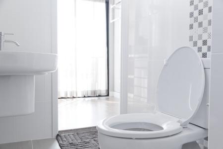 toilet: White toilet bowl in the bathroom.