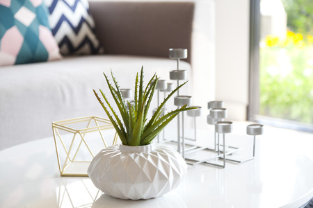 living style: green plant in a vase and candle stand in living room