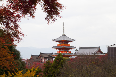 koyo: The Pagoda at Kiyomizu-dera temple with colorful red leaves